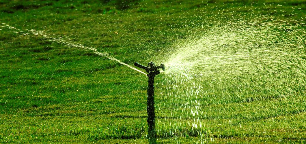 Watering and Mowing